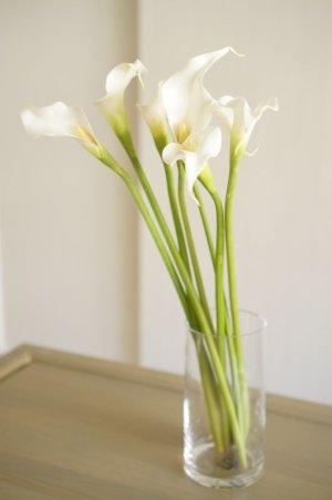 画像2: 【造花】カラー(ホワイト) 53cm7本セット