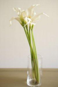 【造花】カラー(ホワイト) 53cm7本セット